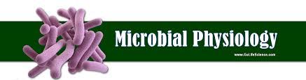 Fisiologi Mikroba