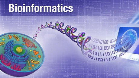 Biotekinformatika